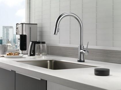 Delta Faucet Homeowner Index Shows Spike in Remodel Budgets